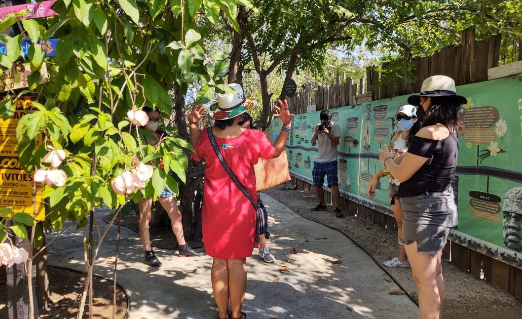 Planeta Cacao, mujer de espaldas, womans